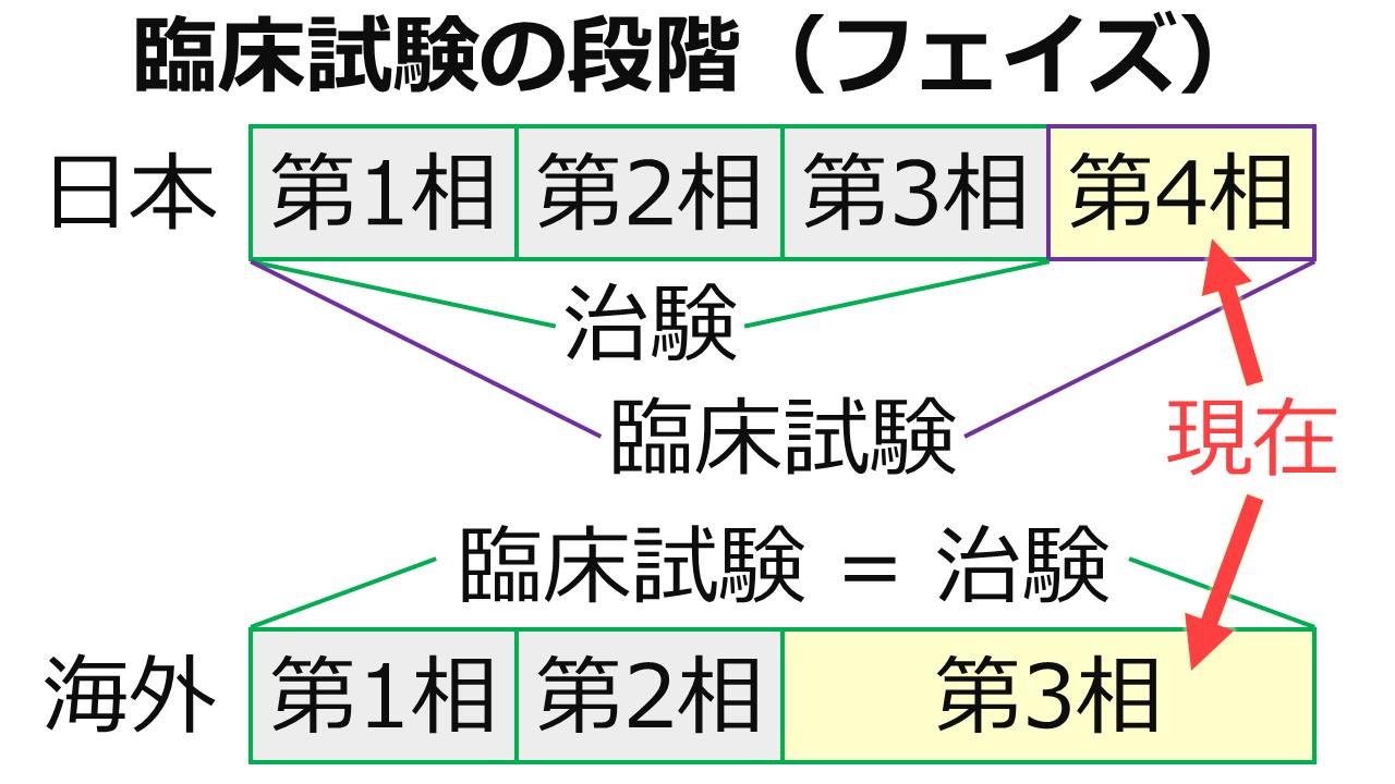 臨床試験の段階の図