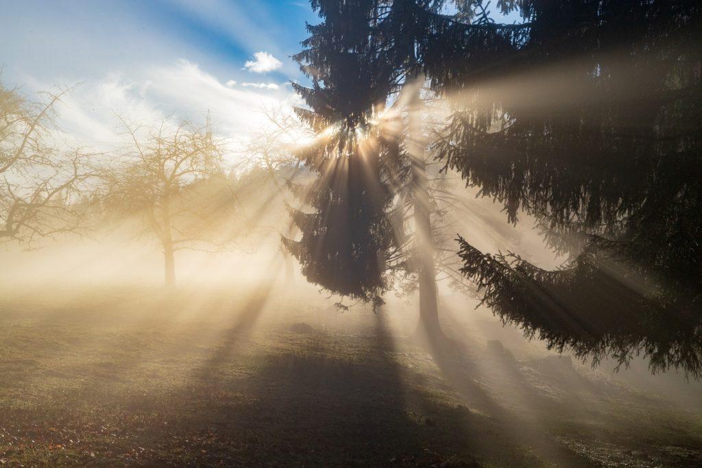 希望の光が見えますか?